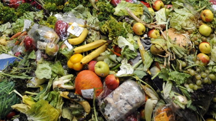 Does Food Waste Really Matter?